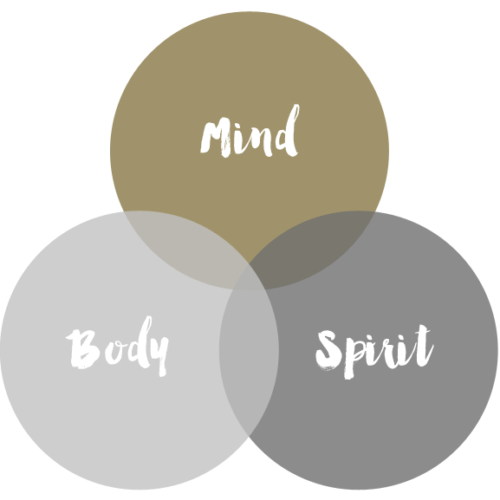Mind Body and Spirit Diagram